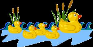buoyant duck